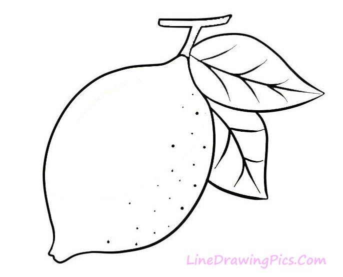 レモンのイラストの簡単な書き方 簡単な絵の描き方